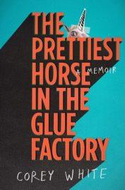 prettiest horse in the world